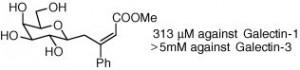 Bioorg Med Chem 2008 16 7811