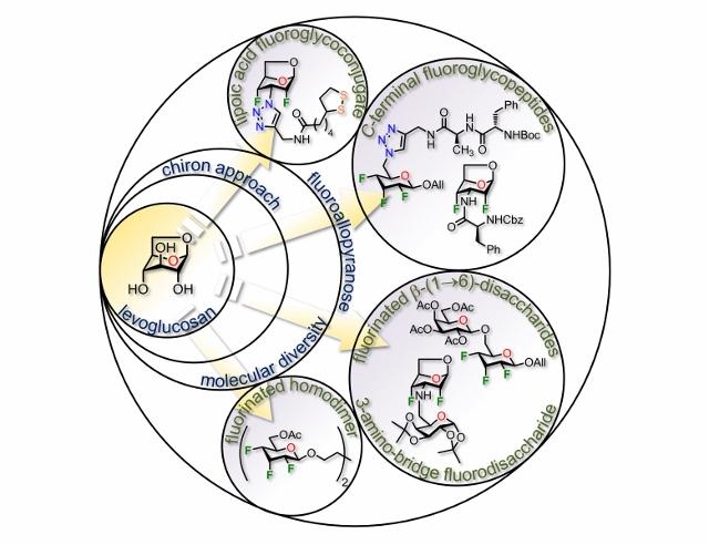 Chem Eur J 2019 (640x492)